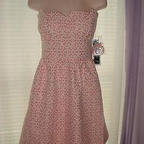 Kensie Strapless Dress 10 (For Career Casual Wedding) Photo