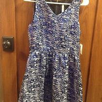 Kensie v-Neck Dress in Striking Blue Combo Photo