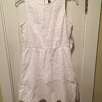 Kensie White Embroidered Eyelet Fit & Flare Dress Medium M Nwt Photo