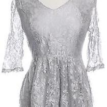Kensie Womens M Lace Flare a-Line Dress Knee-Length Silver 3/4 Sleeve Floral Photo