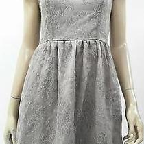 Kensie Womens S Lace High Waist Tea Party Dress Short Formal Beige Chop 4uwnz1 Photo