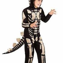 Kid's Stegosaurus Fossil Costume Photo