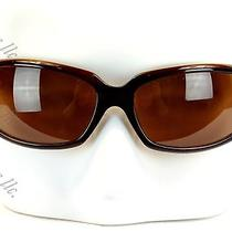 Kieselstein-Cord Whata Croc Women's Sunglasses Brown Frame Almond Brown Lens  Photo