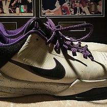 Kobe Size 8 Photo