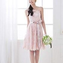 Lace Blush Dress Size 4 Photo