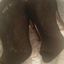 Lace Booties Aldo Shoes  Photo