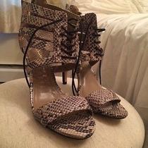 Lace Up Python Heels Photo