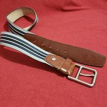 Lacoste 25105 Genuine Leather & Lining Blue Striped  Silver Tone Buckle Belt 36 Photo