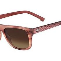 Lacoste  657 Sunglasses Rose Horn Photo