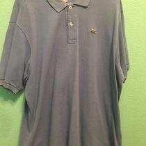Lacoste Baby Blue Polo Photo