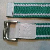 Lacoste Belt-Green W/ White Leather Ends-Unisex Photo
