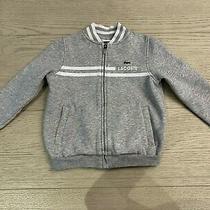 Lacoste Boys Gray Sweatshirt Size 6 (Runs Small) Photo