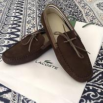Lacoste Concourse Suede Loafer Photo