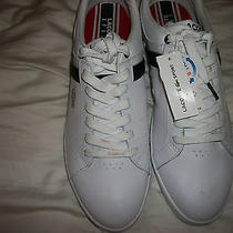 Lacoste  Evershot sz.11r & 11.5 L Leather White/dk Blue Sneakers  New Re 140 Photo