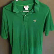 Lacoste Green Polo Large  Photo