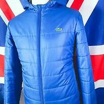 Lacoste Hooded Puffer Jacket - L/xl - Blue - Mod Casuals 60's Photo