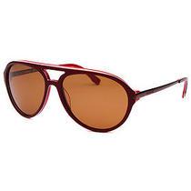 Lacoste L651sp-603 'S Aviator Maroon Sunglasses Photo