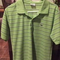 Lacoste Large Stripe Green Photo