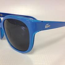 Lacoste Live   Sunglasses Blue Photo