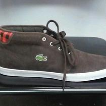 Lacoste  Man Brown Leather Mid  Photo