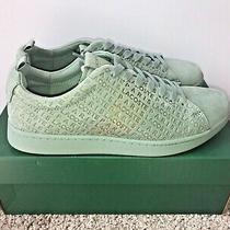 Lacoste Men's Carnaby Evo 319 Sneaker Green Gold (8.5) (Brand New) Photo