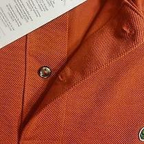 Lacoste Mens Polo Shirt Photo