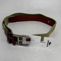 Lacoste Mens Canvas Belt Square Buckle Sz L Tan Brown Logo Sale Designer Adult Photo