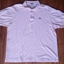 Lacoste Mens Polo Large  Photo