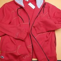 Lacoste New Men Cotton Hoodie Color Red Size Xxl Photo