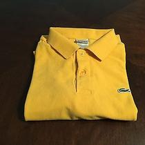 Lacoste Polo (Large) Photo