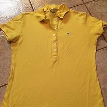 Lacoste Polo Shirt 42 Photo