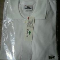 Lacoste Polo Shirt Photo