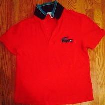 Lacoste Polo Shirt Men Photo