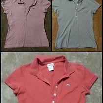 Lacoste Polo Shirts Photo