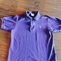 Lacoste Polo Size 4 Photo