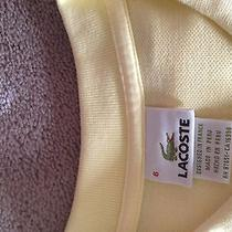 Lacoste Polo Size 6 Photo