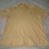 Lacoste Polo T-Shirt Photo