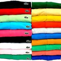 Lacoste Polos for Men Photo