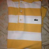 Lacoste Shirt Size Large Photo