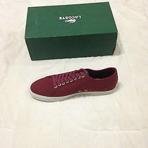 Lacoste Shoes (Price Reduced - Final) Photo