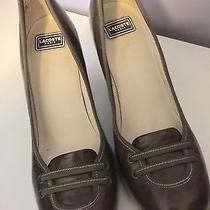 Lacoste Shoes Size 7 Photo