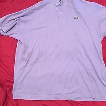Lacoste Size 7 (Xxl) Photo