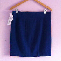 Lacoste Skirt 12 Nwt Stretch Pencil Skirt Blue Approx. Above Knee Photo