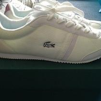 Lacoste Sneakers Photo