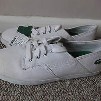 Lacoste Sport Andover Mens Canvas White Shoes Trainers Uk 8 Eu 42 Us 9 New Tags Photo