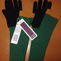 Lacoste Studio Long Gloves Womens Medium Knitted Cindy 100% Merino Wool New Photo