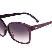 Lacoste Sunglasses 614 Wine Photo