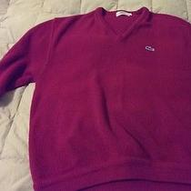Lacoste Sweater  Photo