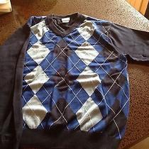 Lacoste Sweater Photo