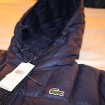 Lacoste Water Repellent Hooded Down Jacket Coat Size Us L. Photo